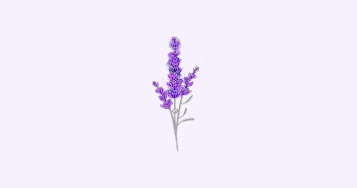 flora packaging design